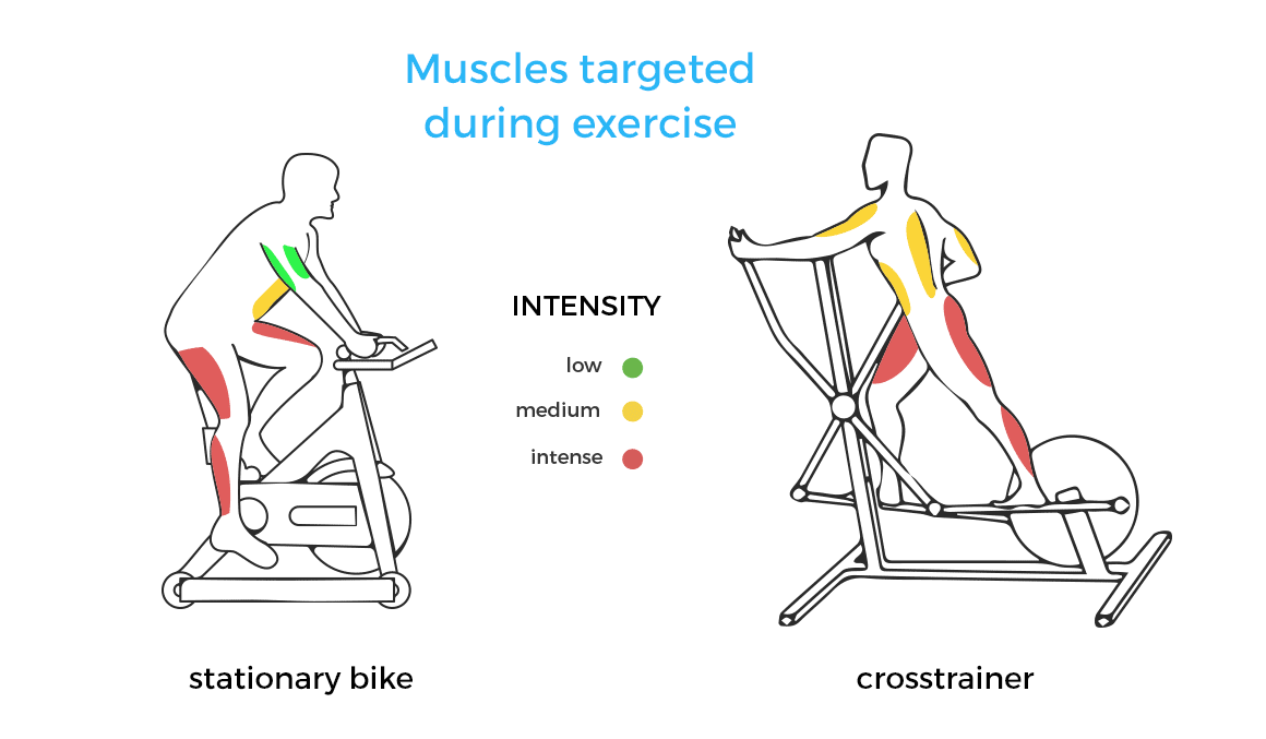 Which Cardio Workout Machine Is Better